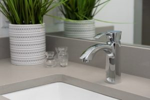 sink with decorative plant